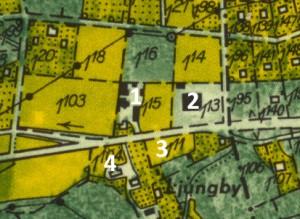 Spargel 1951