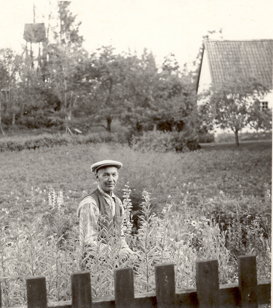 Georg Freden