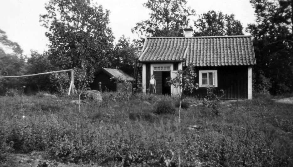 Tegelbacken 1982
